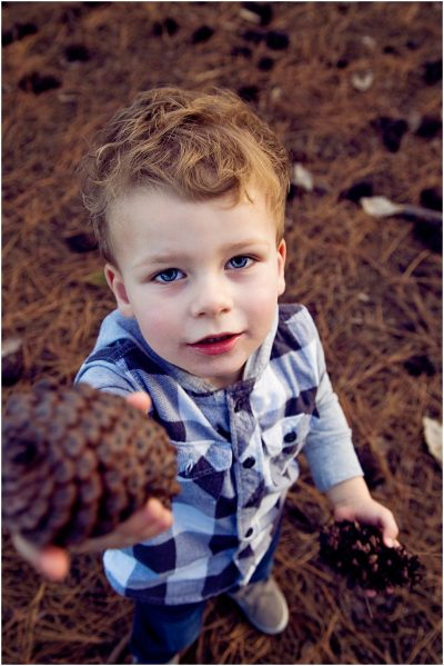 little-boy-finding-and-sharing-pine-cones-during-his-family-short-story-telling-photography-session