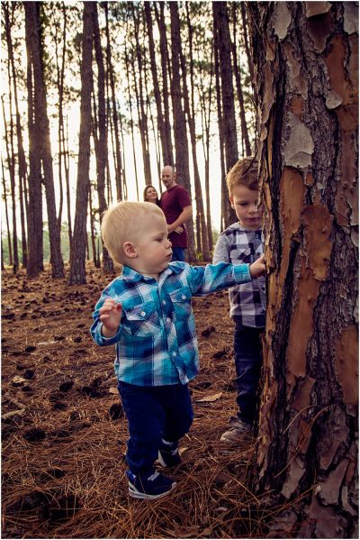 two-toddlers-exploring-the-trees-in-pizzy-park-as-their-parents-look-on-gold-coast