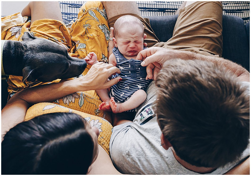 gold-coast-newborn-in-home-lifestyle-photography-dog-mum-and-dad-looking-at-newborn-baby-during-inhome-newborn-photography-session