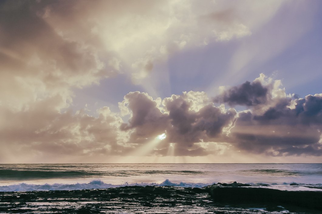Blog-image-snapper-rocks-gold-coast