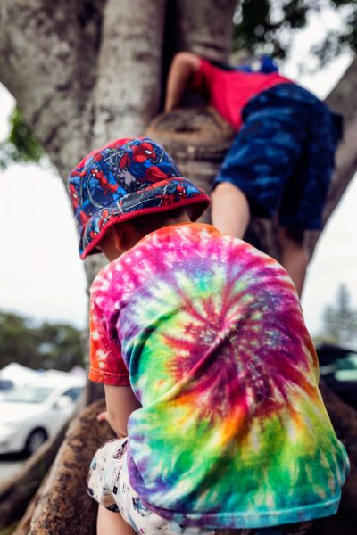 two-brothers-climbing-trees-Pottsville-Family-documentary-photography