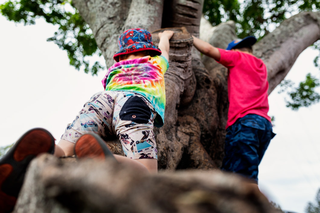 two-boys-climbing-a-tree-as-part-of-a-day-in-the-life-photography-gold-coast-and-surrounds