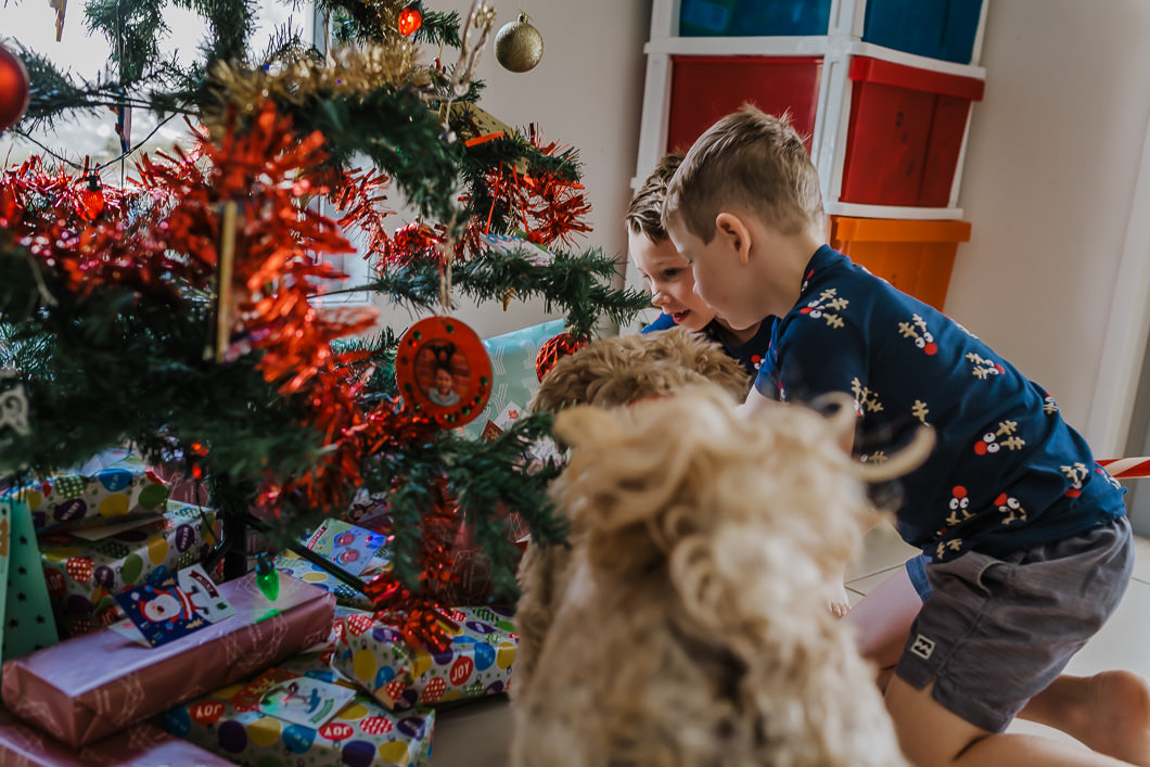 children looking at the Christmas gifts under the tree with their pet dog Charlie Gold Coast