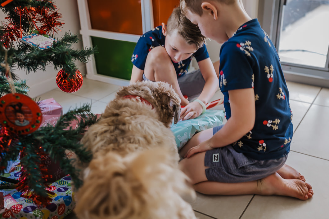 boys sharing Christmas present with their pet dog