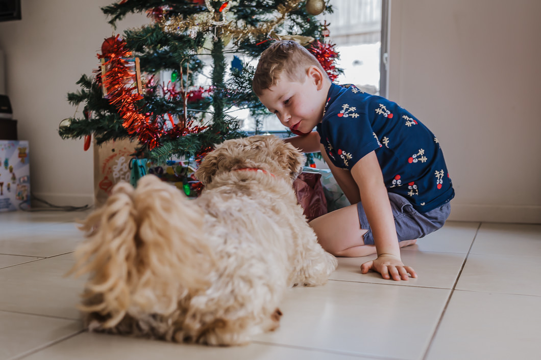 little boy and pet dog sitting under the Christmas tree looking at all the presents