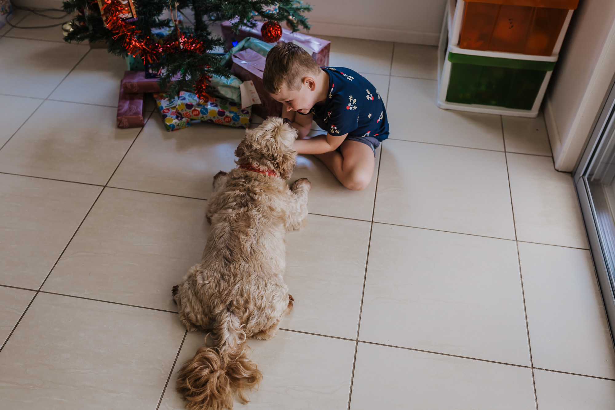 a boy cuddles his dog as they sit at the foot of the xmas tree